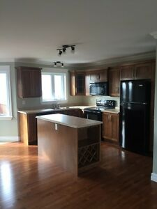 Immaculate Three Bedroom Home - Mount Pearl, NL