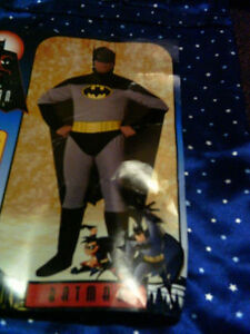 Halloween Costume Batman Cat Fiona Cinderella Catwoman. NEW
