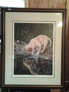 Puppy Reflections Ducks Unlimited Print