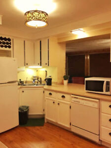 Mature roommate wanted, South end