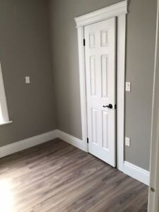 Newly Renovated 2 Bedroom Walking Distance to Google Jan 15th Kitchener / Waterloo Kitchener Area image 6