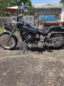 91 Harley Davidson custom softail