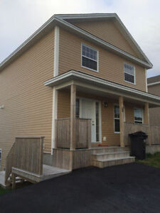 Beautiful 3 Bedroom Main Floor In Kenmount Terrace