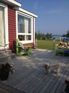 Cottage for rent on the North Shore of NS