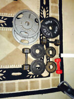 olympic steel plates and hex dumbbells