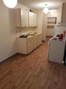 2  Bedroom-Walking distance South Hill Mall - Call (306)314-0214