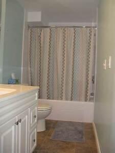 Walkout basement suite Edmonton Edmonton Area image 7
