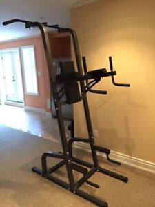 Northern Lights GYM Power Tower  *NEW*!