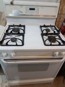 Gas stove, fridge and dishwasher