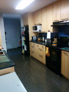 Room for Rent, West End, near Bus Route and River Valley Edmonton Edmonton Area image 2