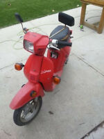 Honda Spree Scooter *trades welcome*