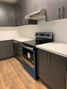 2+1 bed, 1 bath on Queen St and Lewis St
