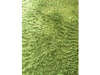 IKEA small green rug