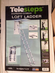 """Extension Ladder"""" Telesteps: Easy to use! Easier to Store!"""