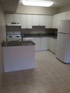 Waterloo Apartment for Rent - Available from October 2017