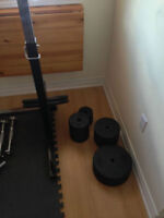 225 pound steel weight lifting kit