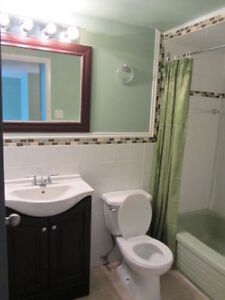 Newly renovated one bedroom apartments $650
