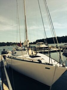 Sly Fox - Chaser 29 for sale