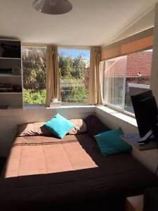 Single room in Bondi Junction! Bondi Junction Eastern Suburbs Preview