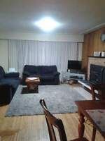 1 shared bedroom available $400
