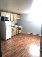 **BEAUTIFUL 1BRM APT (HEAT&LIGHTS INCLUDED)** CLOSE TO NBCC