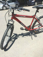 21 speeds Mountain bike