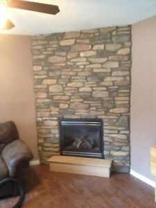 Fireplace repairs And refacing Windsor Region Ontario image 3