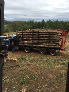 Bargain firewood 8ft dry hardwood $165 -& green 145 401-7346