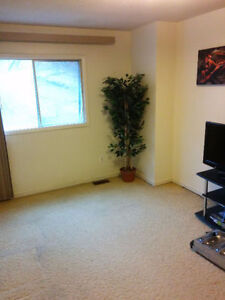 Nice Room For Rent in The South End