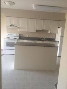 Dec 24 Room in Clean Apartment for Rent All Inclusive Kitchener / Waterloo Kitchener Area image 2