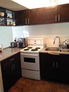 Furnished & Renovated Downtown Condo in GREAT location!!!