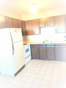 WHOLE HOUSE, Duplex, 2 Bedrooms, All Amenities!