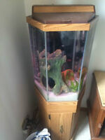30 gallon hexagon aquarium with stand