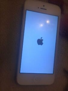 3 month old iPhone 5 16 GB VERY MINT Rogers Need Gone Today Kitchener / Waterloo Kitchener Area image 1