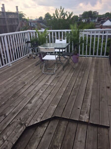 Room for rent in the heart of Little Italy