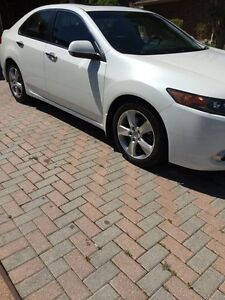 2012 Acura TSX Premium Package Low KMS