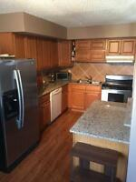 NICELY RENOVATED TOWNHOUSE STYLE CONDO W/YARD
