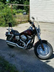 2009 Harley fatbob for sale
