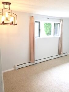 Large Bright 3 Bedroom Suite with storage!