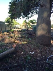 Site leveling and dirt removal Erskine Park Penrith Area Preview