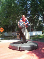 Best company party ever! - Mechanical Bull and other rentals