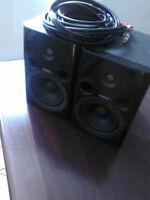 haut-parleurs Fostex 4 pouces