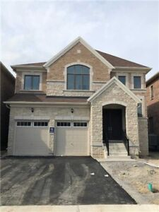 Beautiful 4 Bedroom Home - Newmarket - For Lease