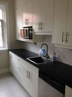 Immaculate fully renovated Victorian 4.5 apartment!!