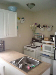 Bright Modern Studio Apartment Kingston Kingston Area image 1