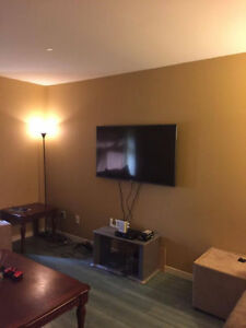 Large Basement Bedroom Available February 1st