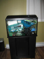 Fish Tank/Shelf/Filtration System/Heater/Accessories & More
