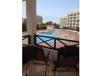 Large Studio Apartment, San Marino, Los Cristianos, Tenerife available for holidays. Near beach
