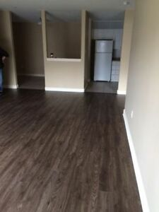 3 bedroom apartment for ONLY $1250 - Bedford