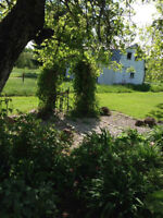 Route 116, Land For Sale in Harcourt NB
